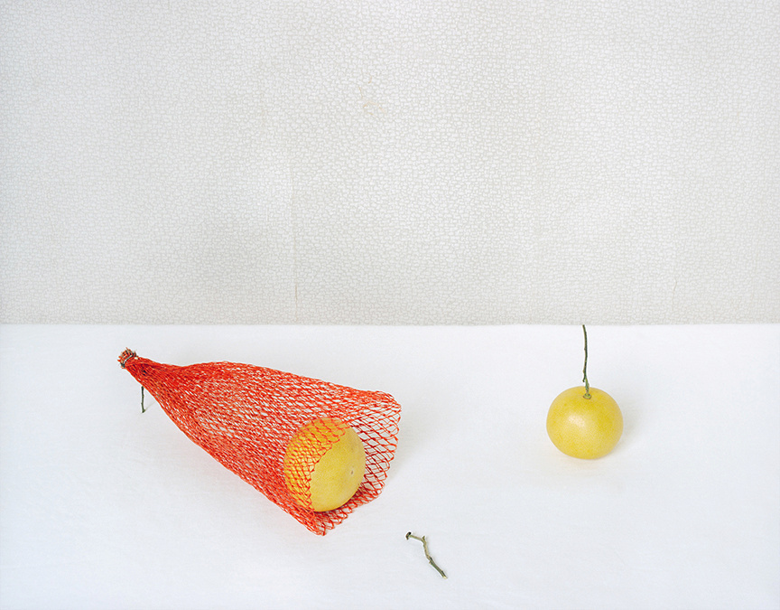 Red Net and Grape Fruits, c 2009