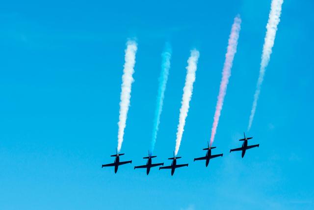 Patriots  L-39 Albatros