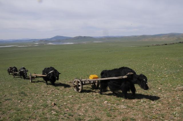 Khovgul Lake, Mongolia