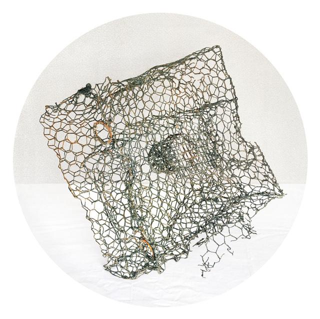 Crab Trap, 2011