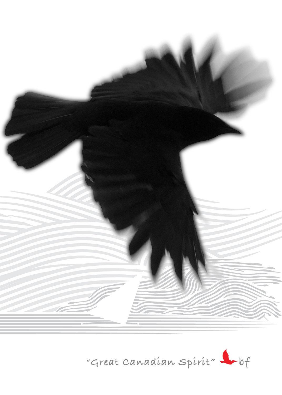 Raven-01.jpg