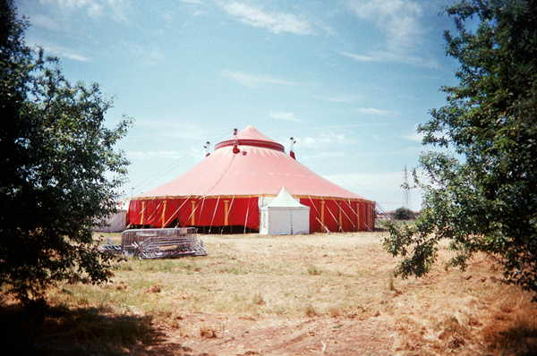 circus tendross-wb copy.jpg