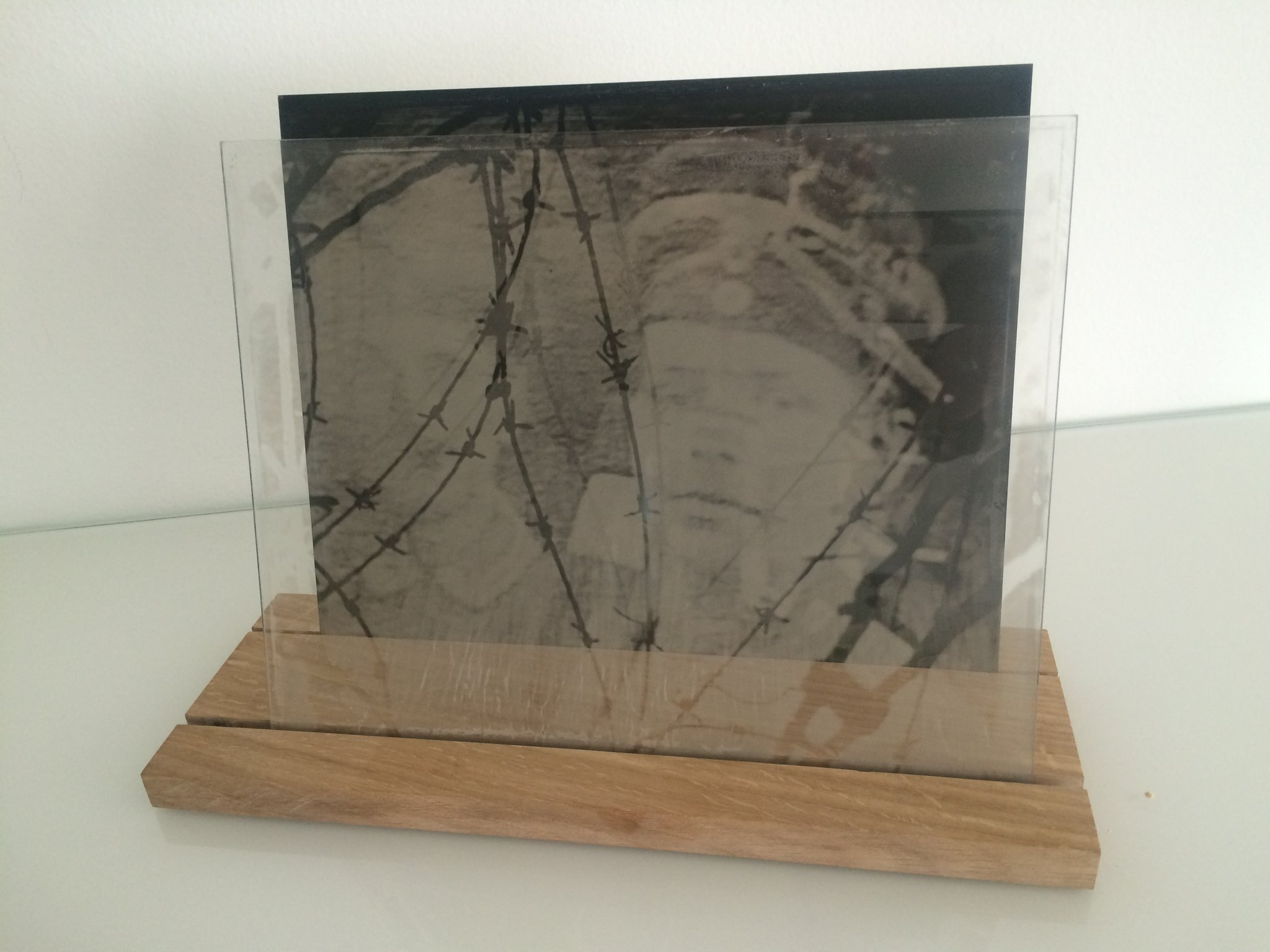Installation-VERDUN IN MEMORIAM-collodion-009.JPG