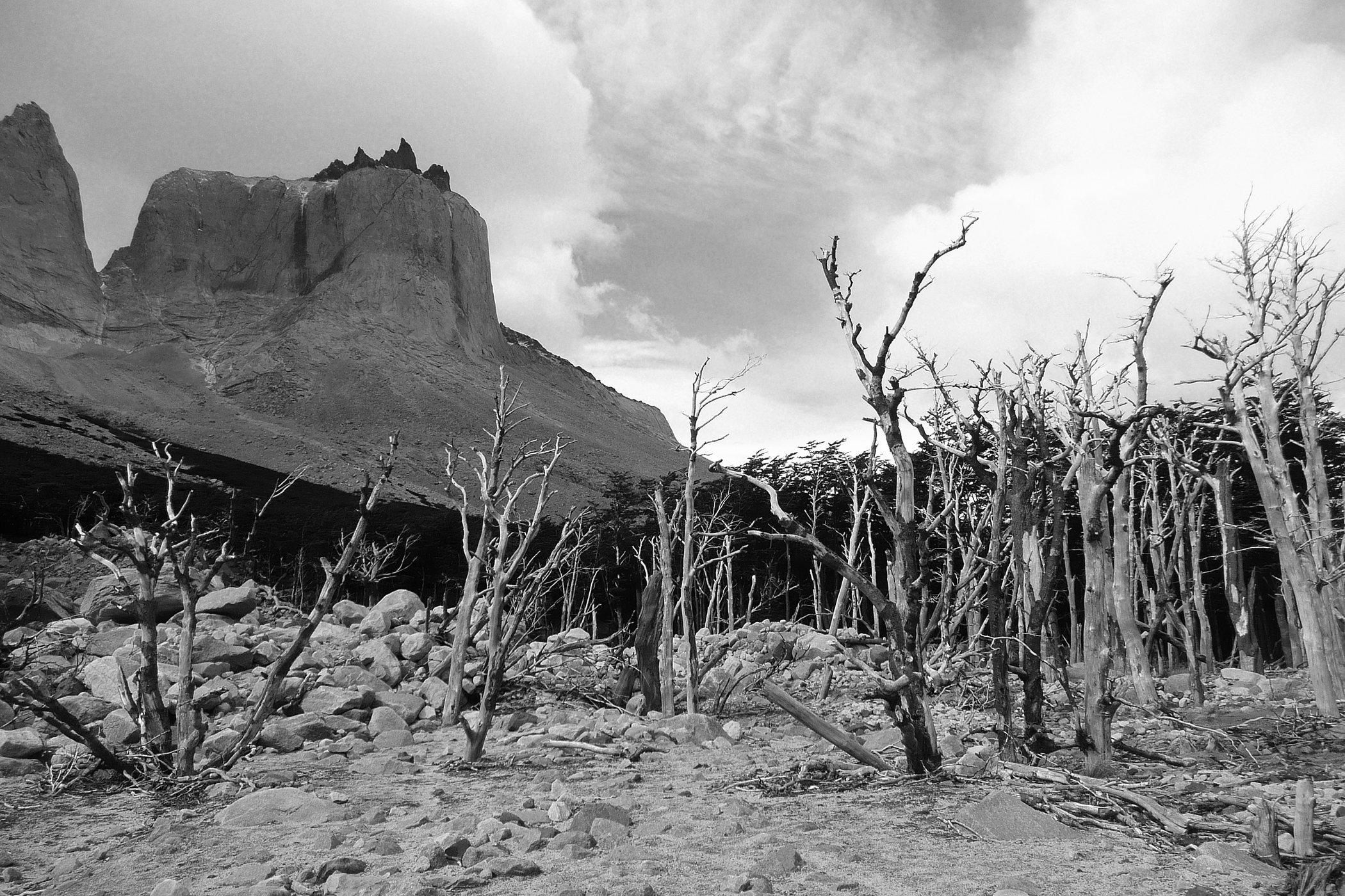 Torres del Paine B&W