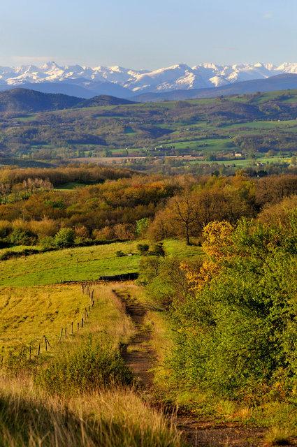 Le chemin du Piémont pyrénéen