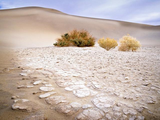 Sand_Dunes.jpg