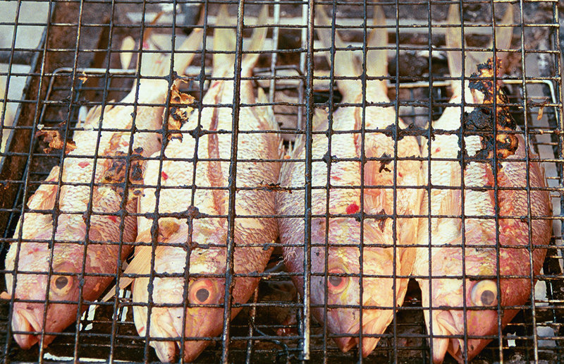 Haitian fish.jpg