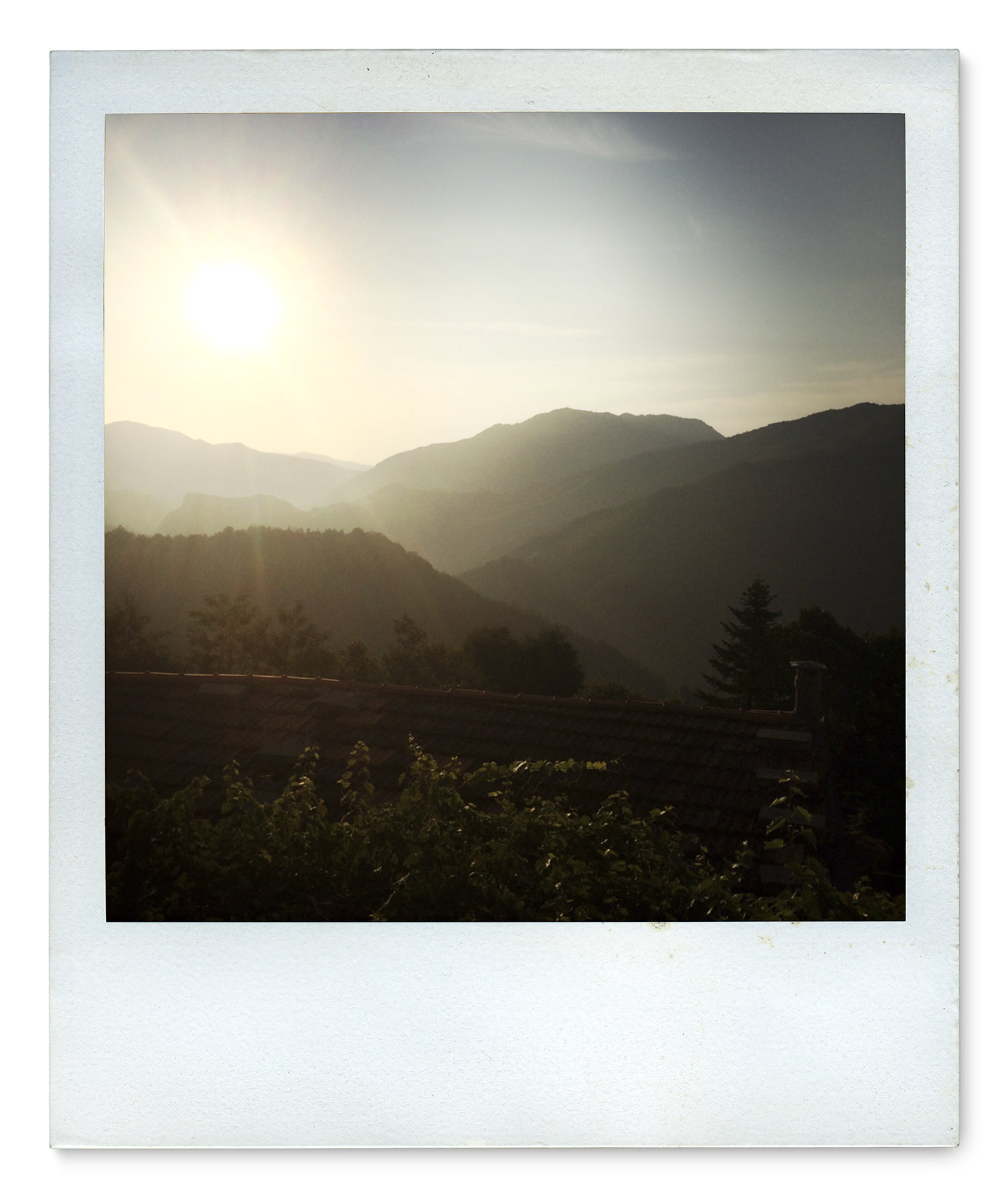 014_Polaroid SX70_IMG_2491.jpg