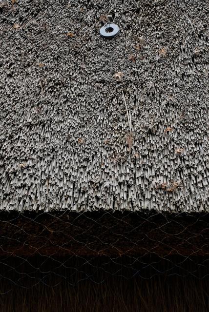 Ton van Bragt: Thatched Roof