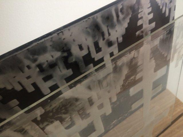 Installation-VERDUN IN MEMORIAM-collodion-018.JPG