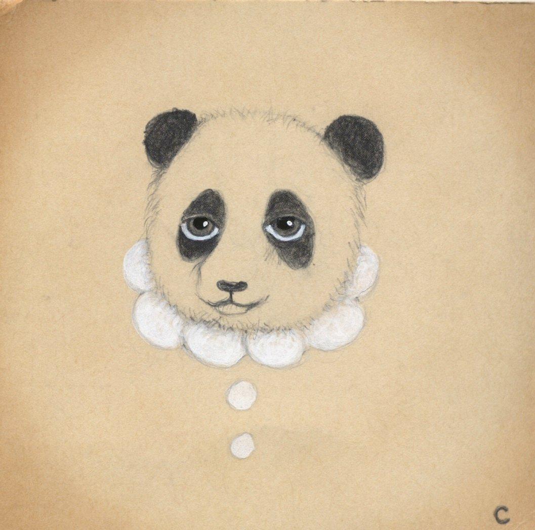 Sir Panda (2013)