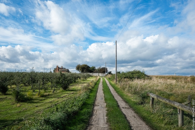 Farm track , Kent