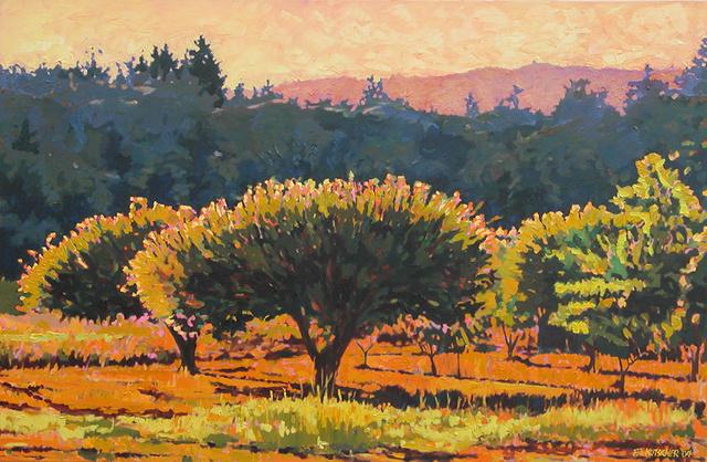 Backlit Orchard - September Evening
