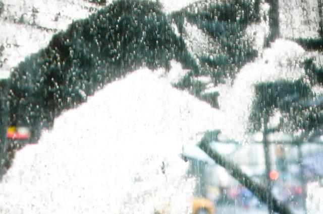 Angel Parade 9-11.jpg