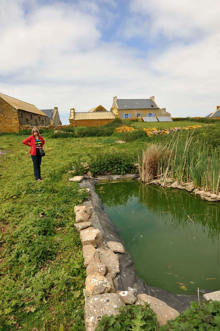Les bassins de traitement des eaux usées