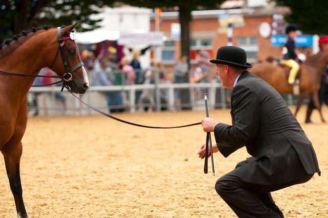 Dublin Horse Show, RDS