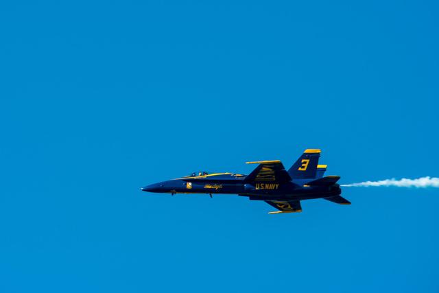 Blue Angels F/A-18 Hornet
