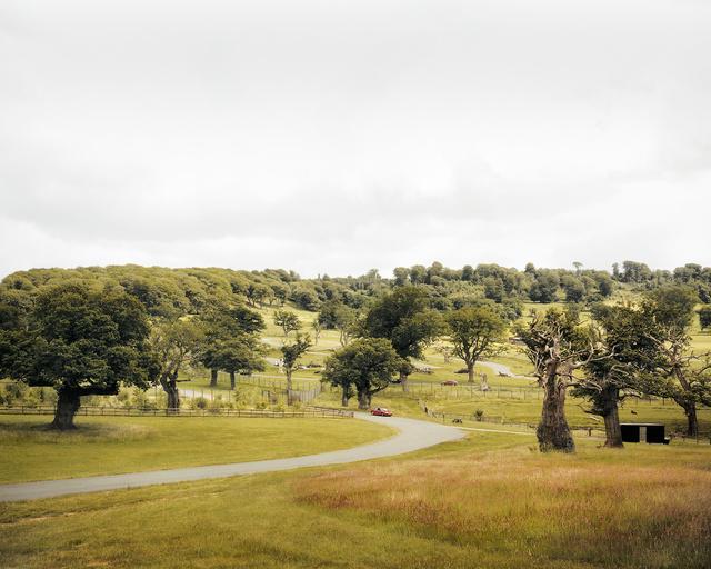 Safari Park, Longleat