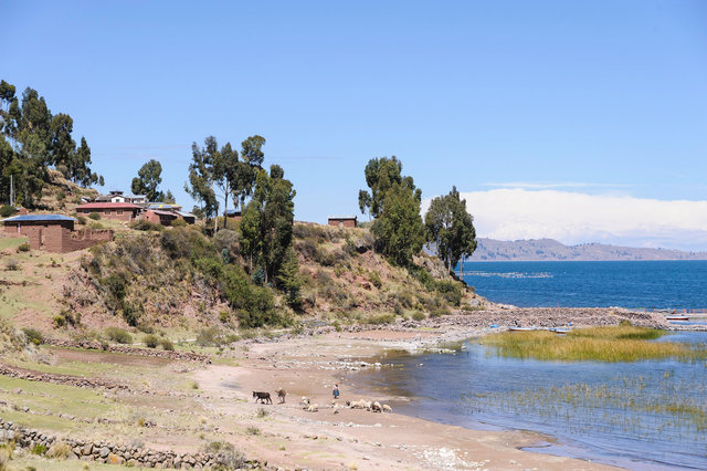 2014-9-Lake Titicaca8.jpg