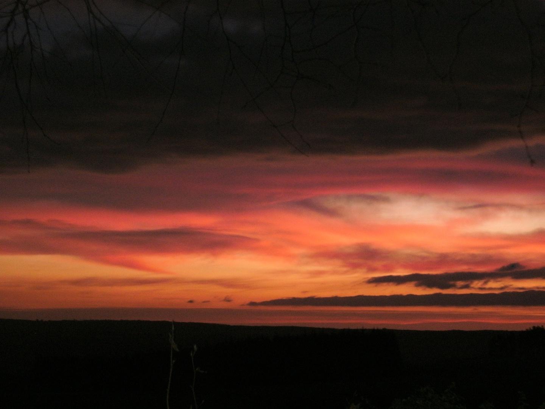 Orange Pink Sunrise by Alison Gracie