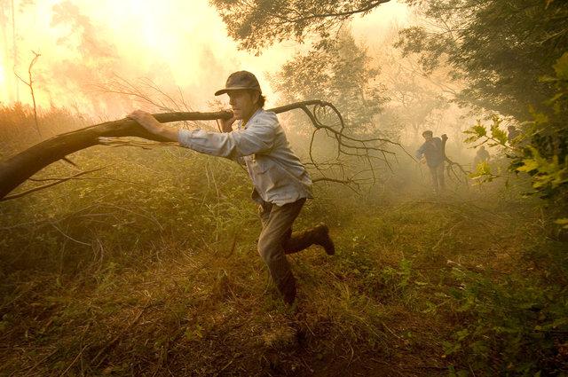 Forestfire-16.jpg