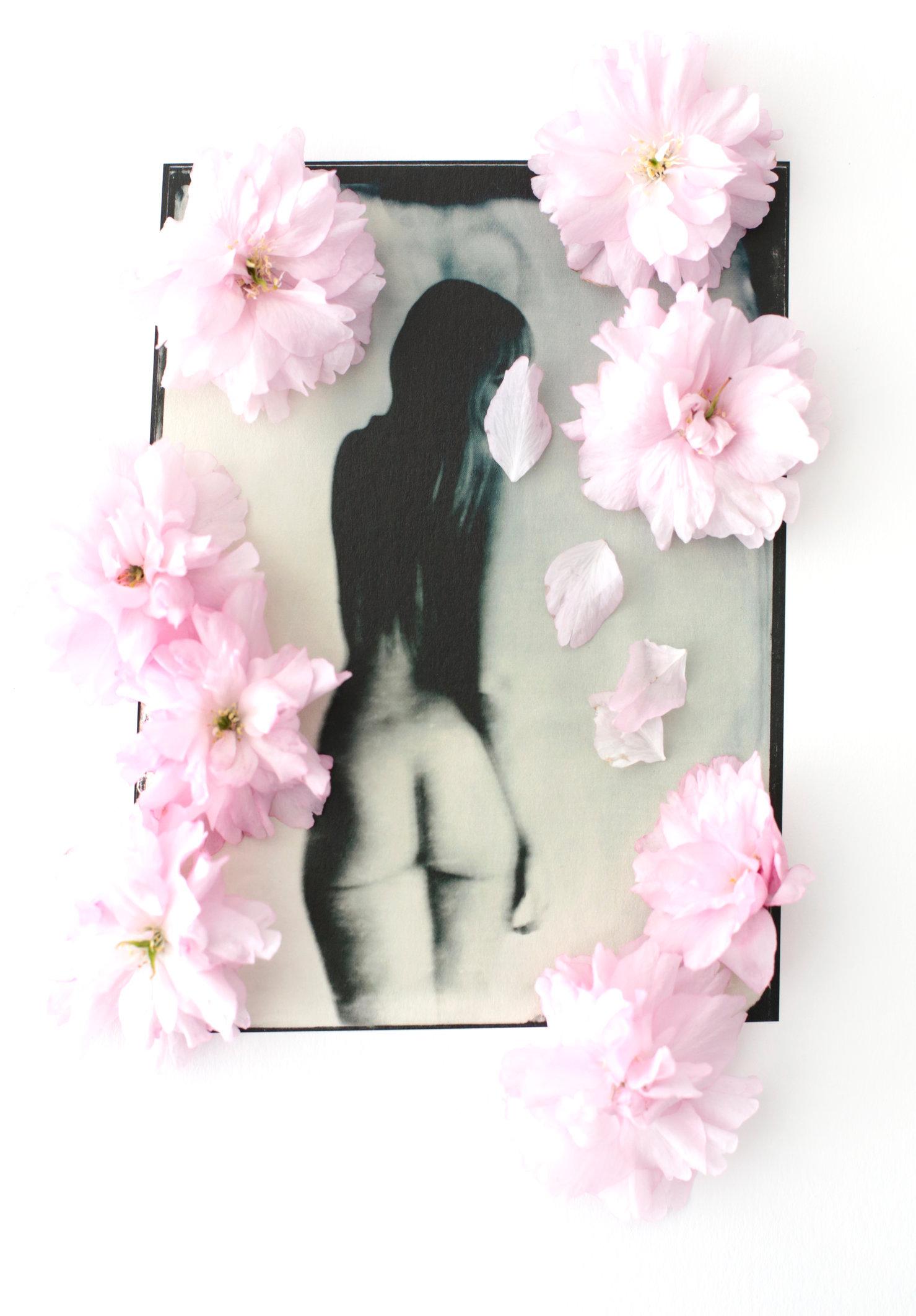 FLOWERS_1_044.JPG