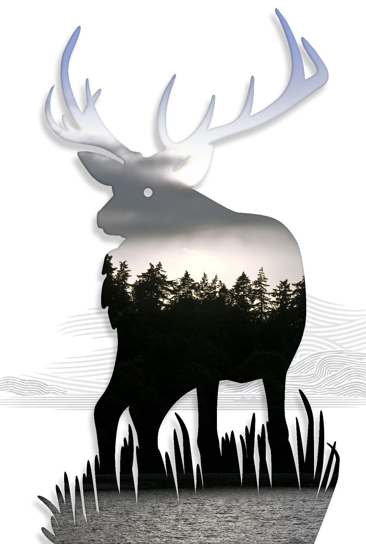 Elk-01.jpg