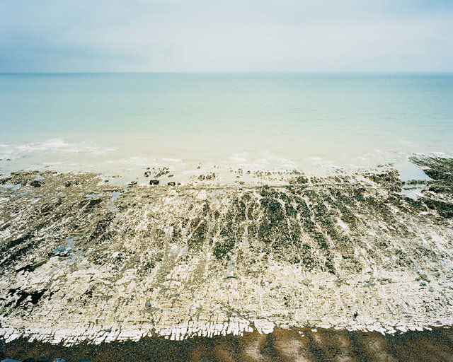 Chalk Wave-Cut Platform, East Brighton