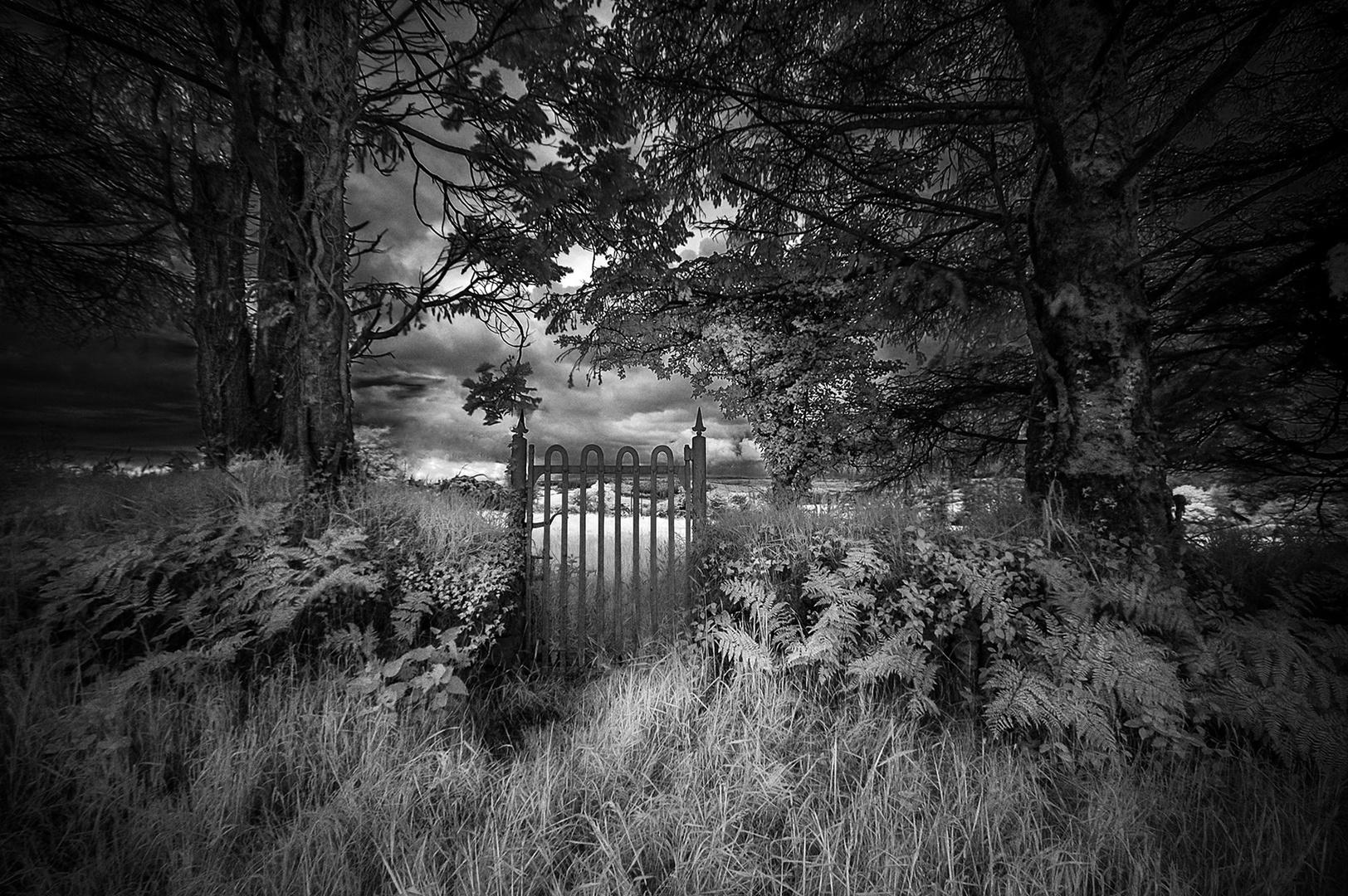 The Hobbits Entrance