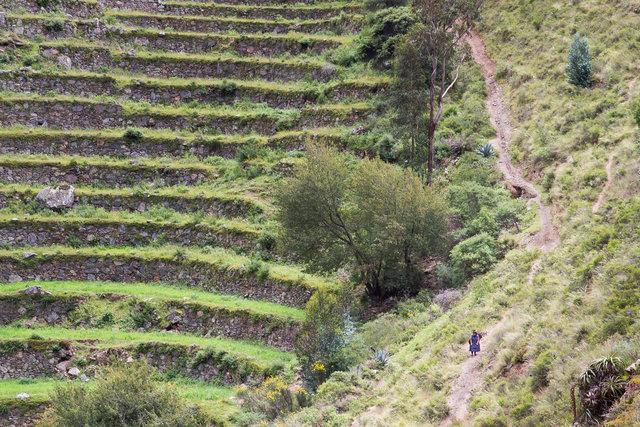 150414_Peru-0636.jpg