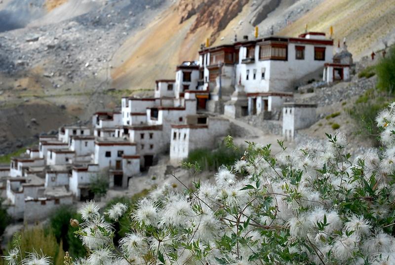 Ladakh_31.jpg