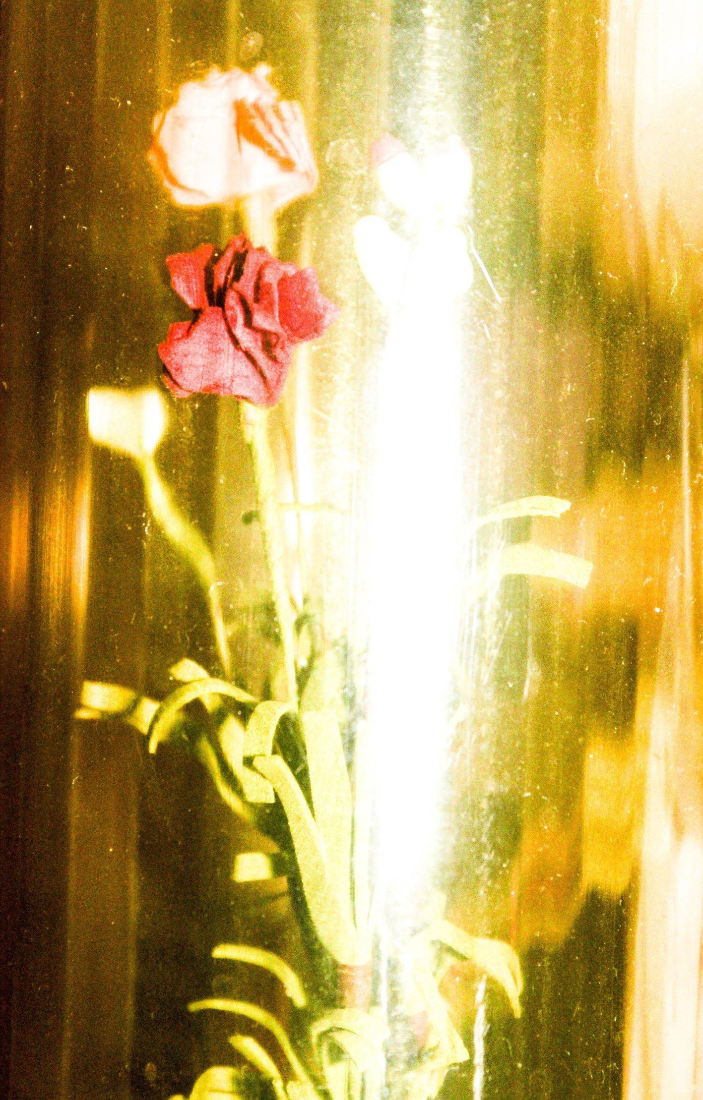 Flowerdeyde.jpg