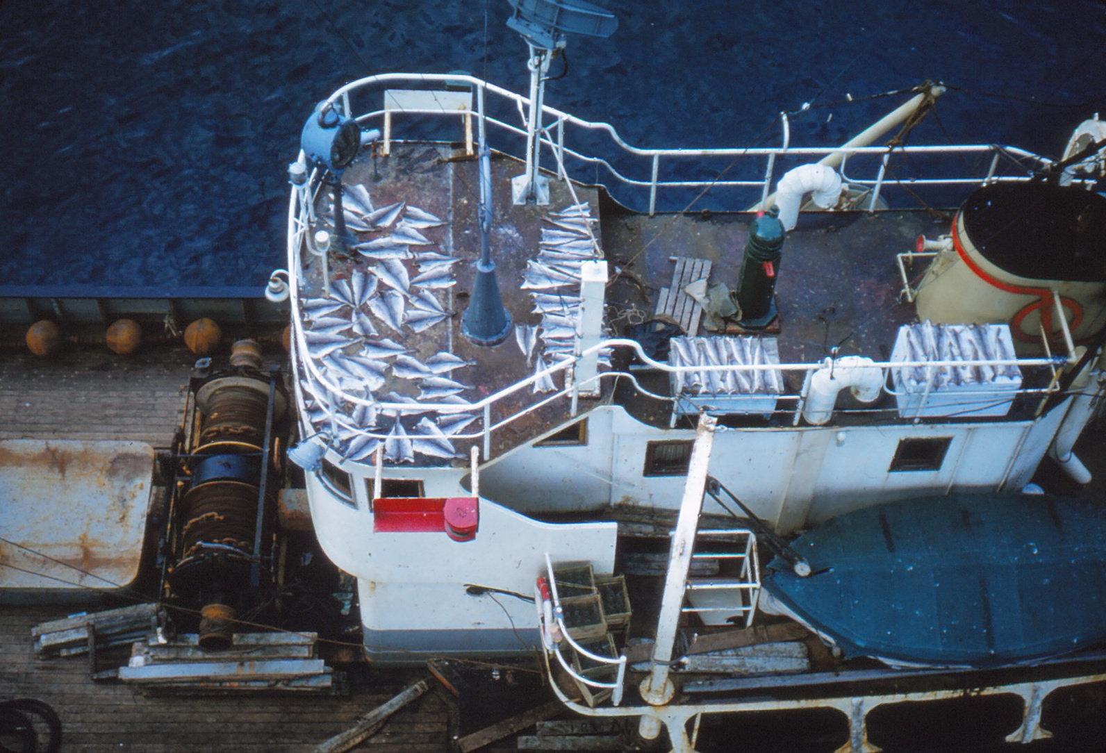876 (25) Vissersschip Tromsø