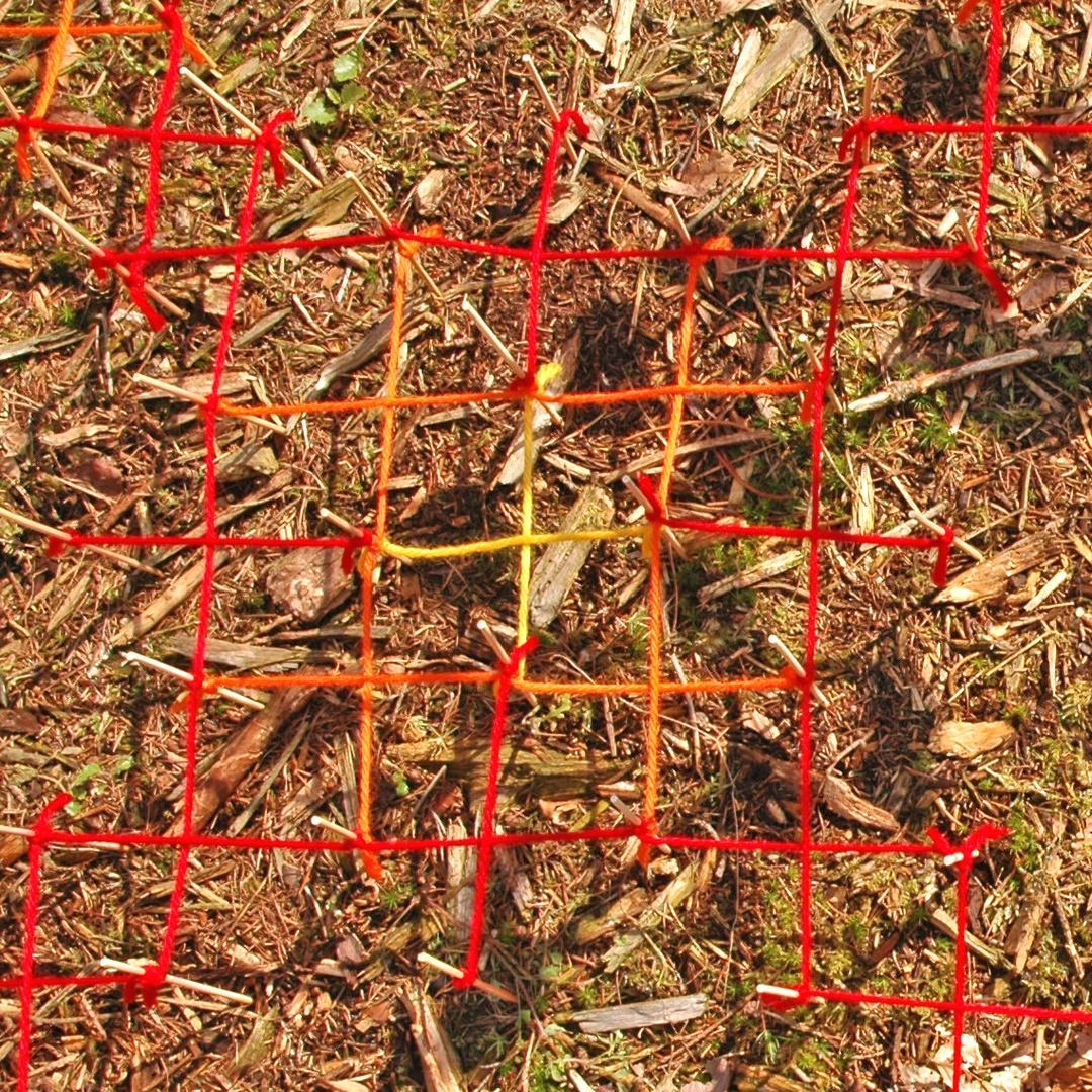bloemenzee een vierkant.jpg