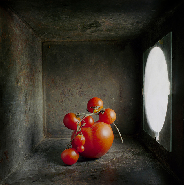Cherry Tomatoes, c 2002