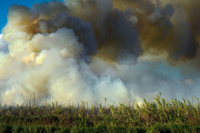 Last sugar cane burn on Maui