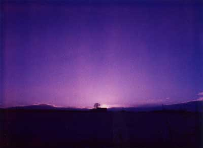 Purple Sunset 5 by Alison Gracie