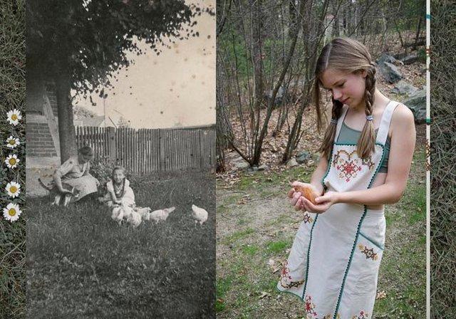 Hühner (Chickens)