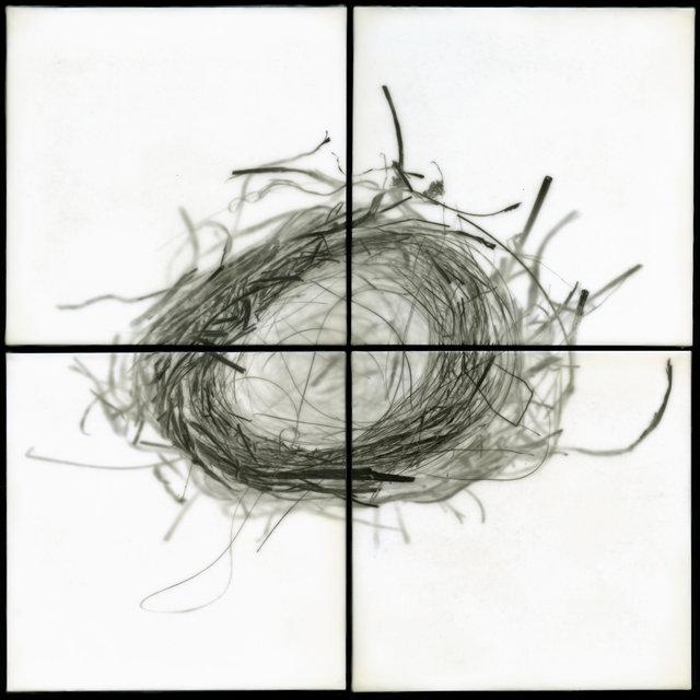 Nest IX