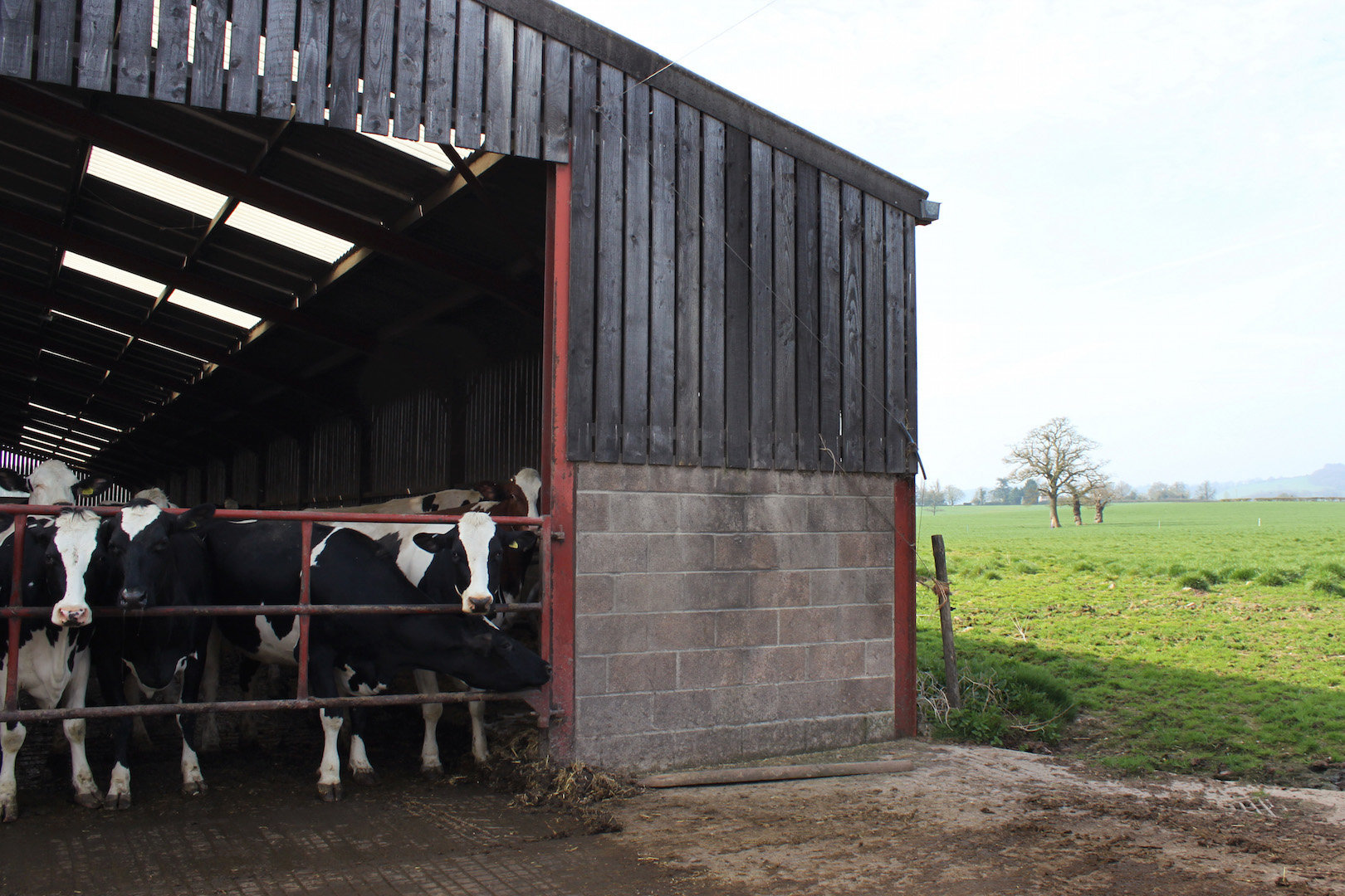 Cow Shed, Bosley Mill Farm, Gloucestershire