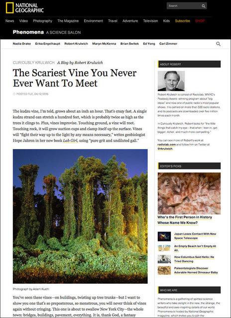 National Geographic's Science Blog, Phenomena