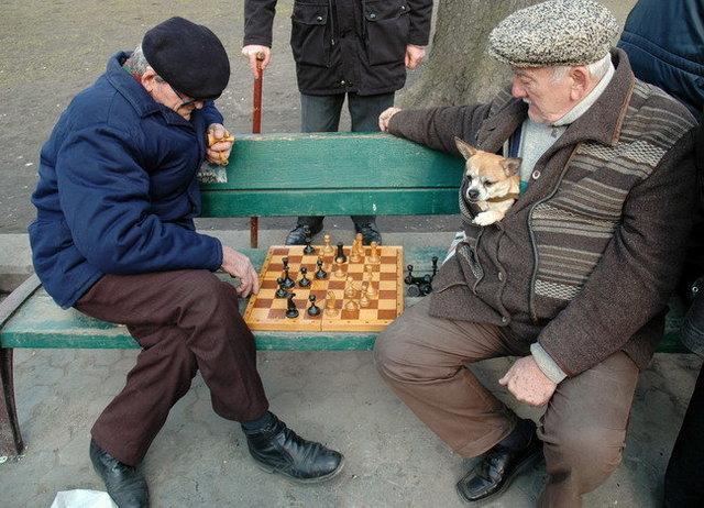 Yurko Dyachyshyn_(Benches)_250_resize.JPG