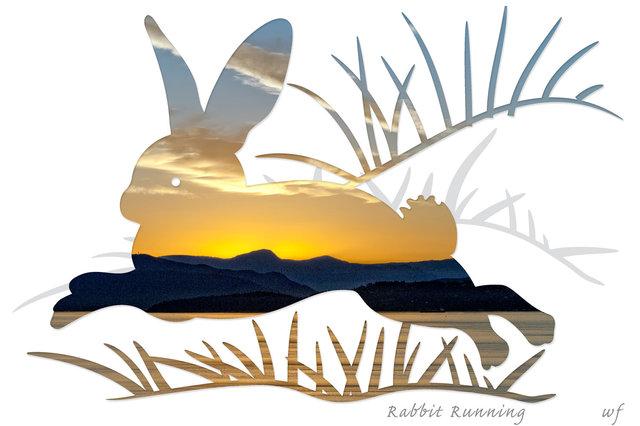rabbit36 (1).jpg