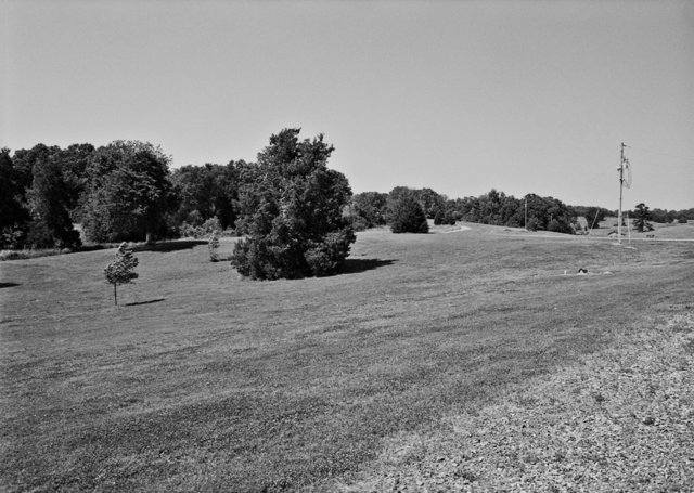 Field - Athens, MS 2011