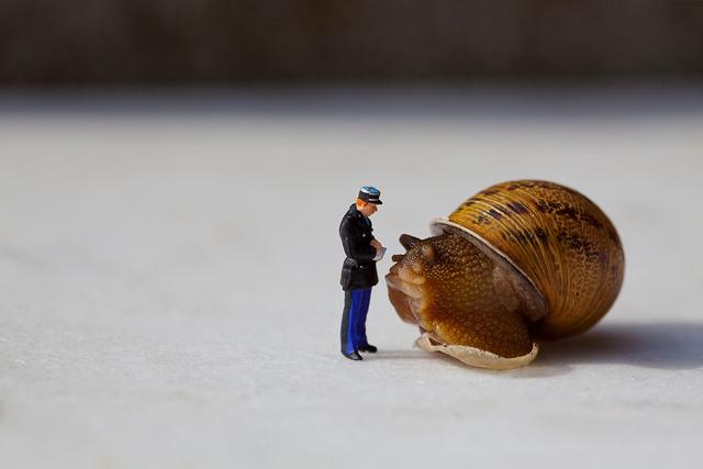 """""""Je vous assure que vous alliez trop lentement"""""""