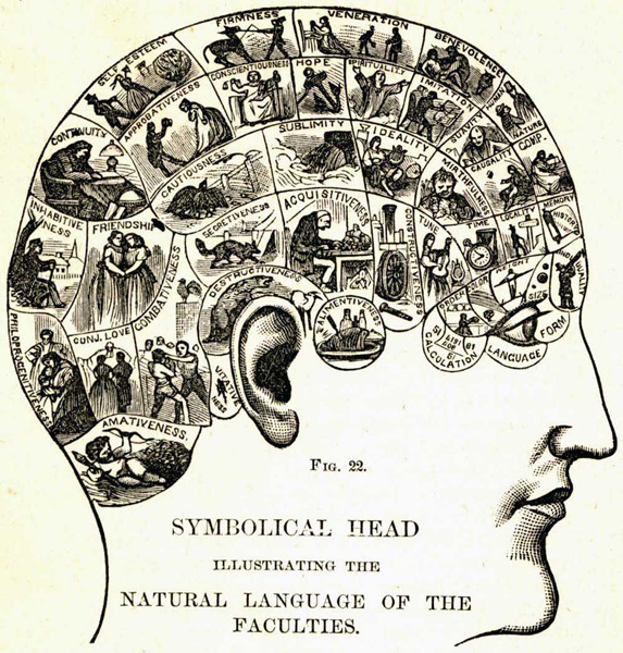 phrenology_personality_trait_diagram.jpg