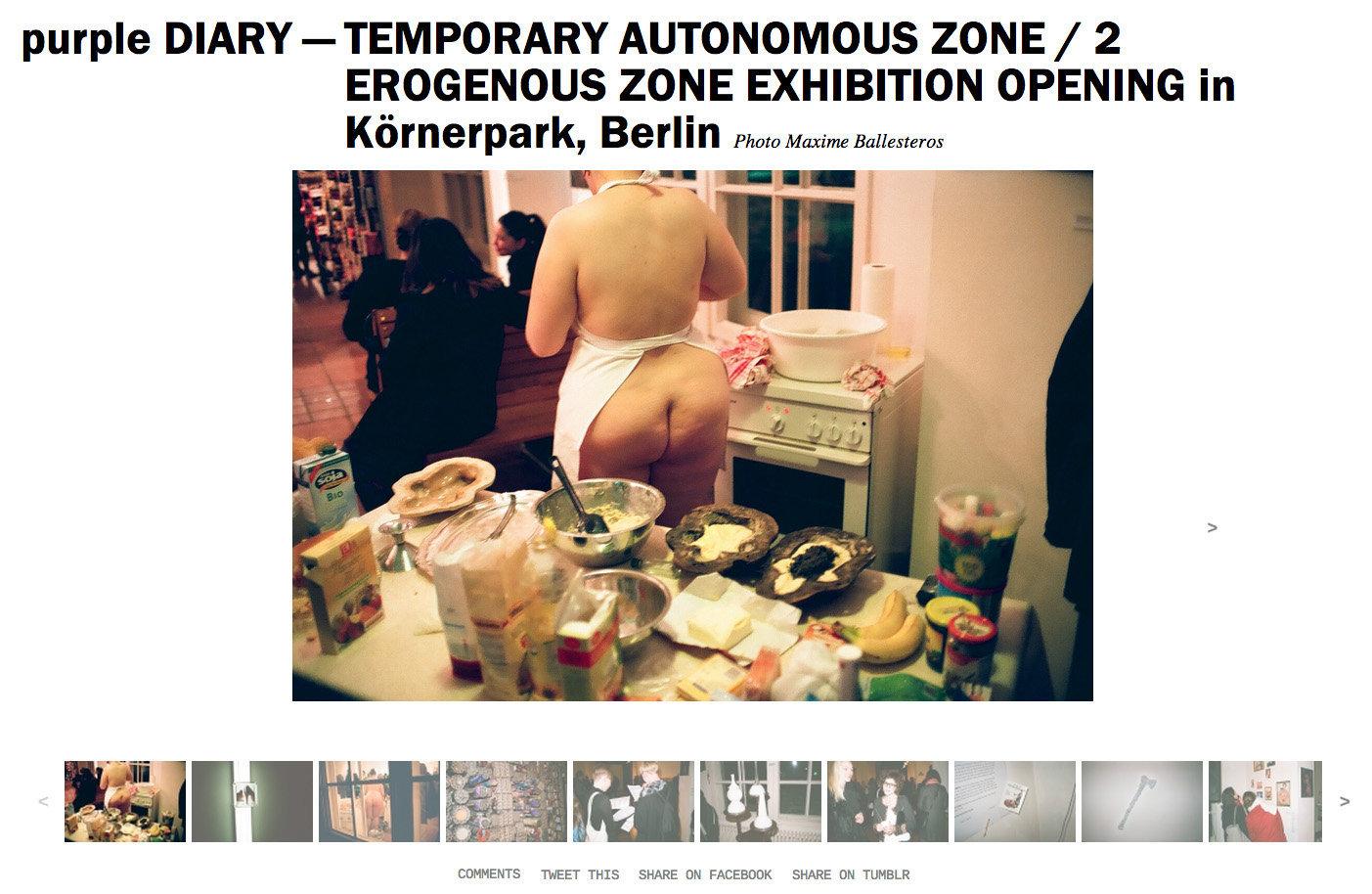 purple DIARY   TEMPORARY AUTONOMOUS ZONE   2 EROGENOUS ZONE EXHIBITION OPENING in Körnerpark  Berli