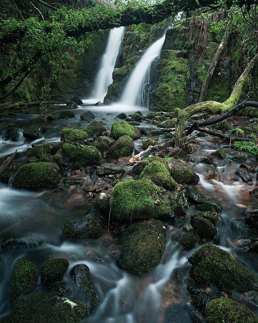 Vennford Falls