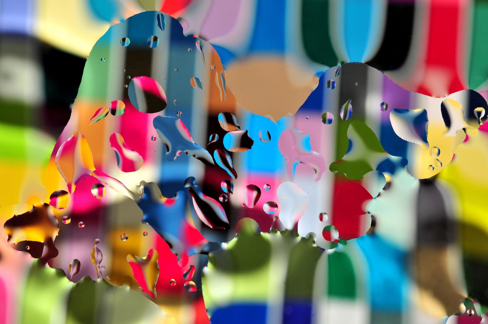 Secret Life Of Color(s)