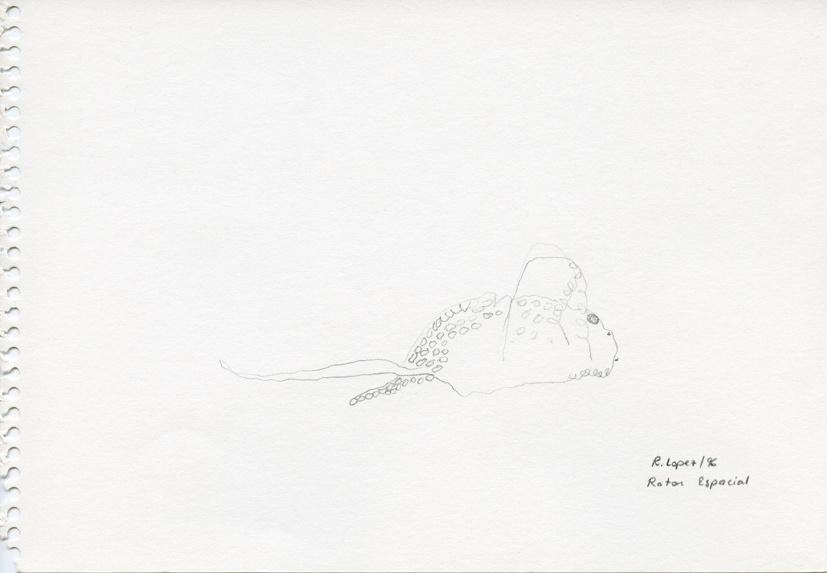 De los animales 4: Ratón espacial